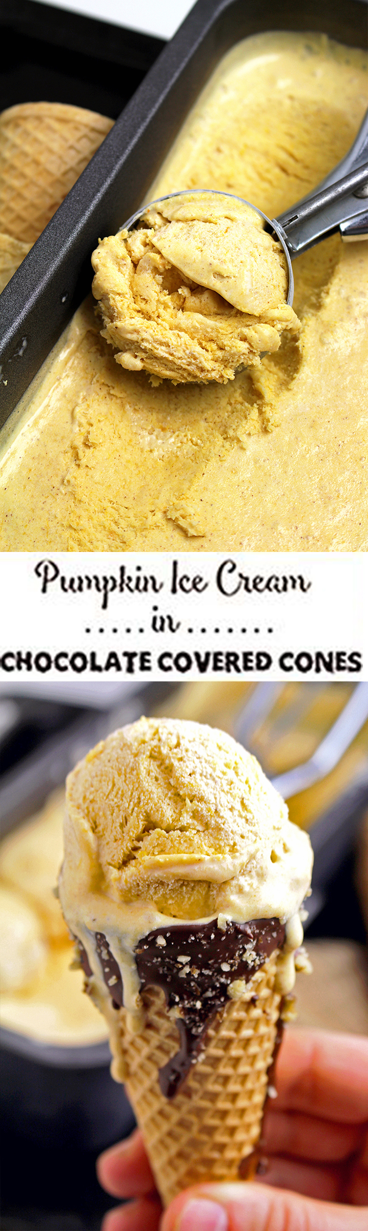 123 Pumpkin Ice Cream in Chocolate Covered Cones