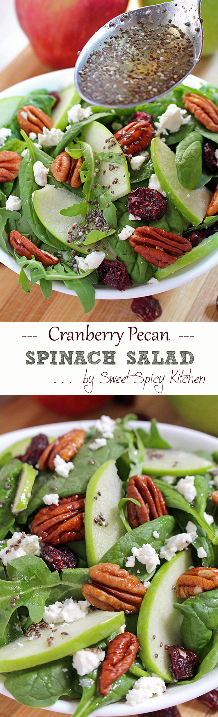 Untitled-19 Cranberry Pecan Spinach Salad