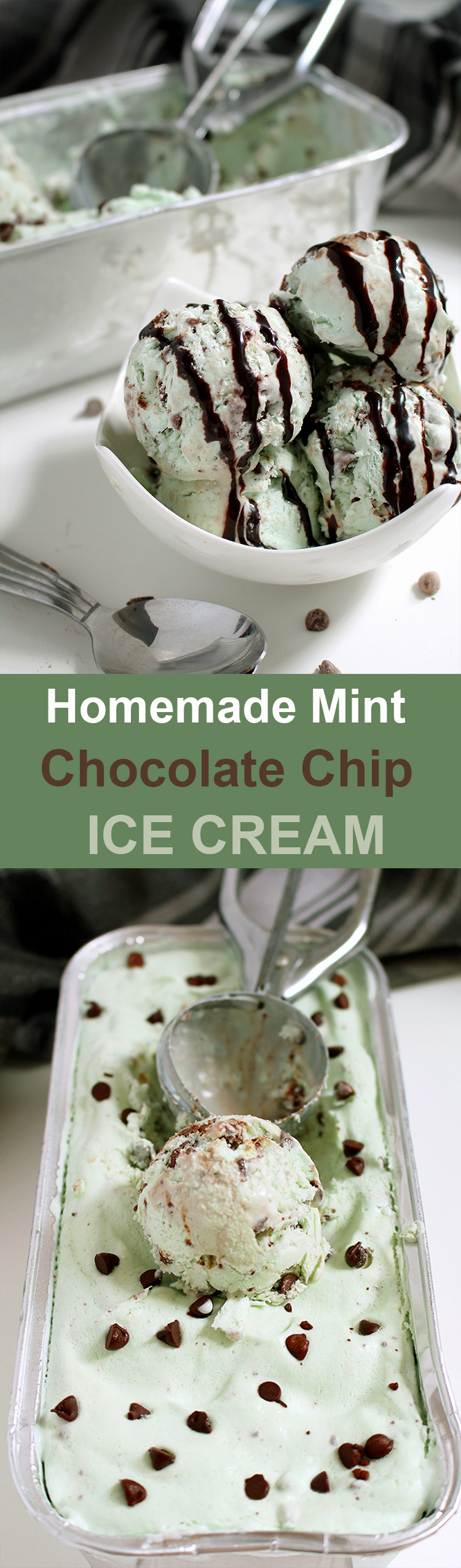 Homemade Mint Chocolate Chip Ice Cream Untitled-153