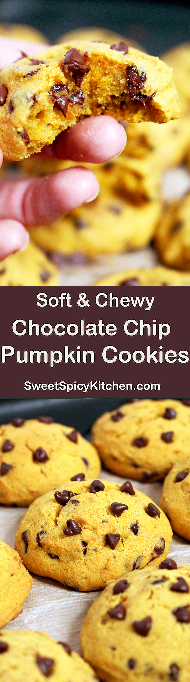 Soft Chocolate Chip Pumpkin Cookies