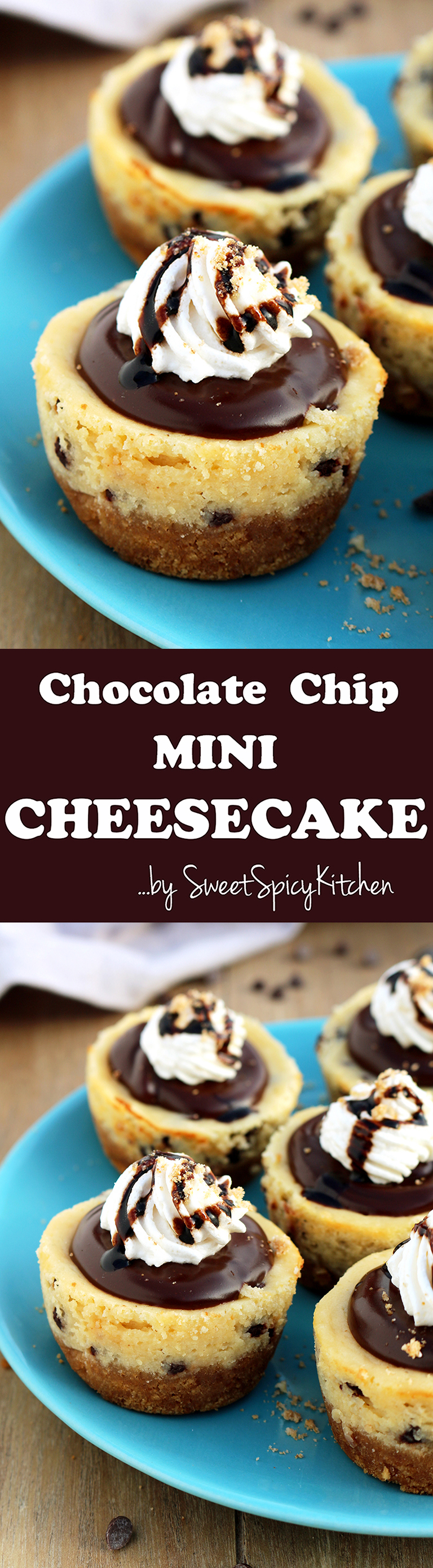 Graham cracker layer, chocolate chips cheesecake, chocolate ganache and whipping cream on the top make these Chocolate Chip Mini Cheesecake just perfect.