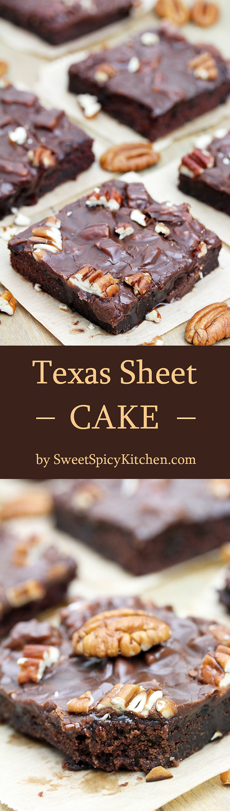 Texas Sheet Cake is thin, super moist chocolate cake, topped with warm chocolate frosting and pecans.
